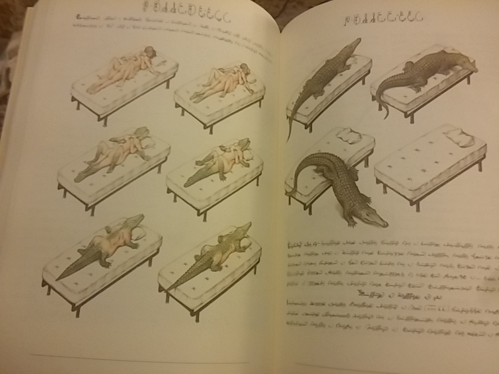 Text and images from Luigi Serafini's Codex Seraphinianus